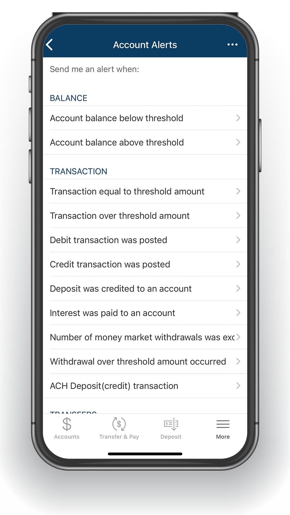 Online-Banking-Alerts